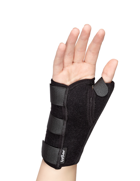 Stabilizes the carpometacarpal and metacarpophalangeal joins of the thumb.